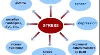 Si jusqu'à un certain niveau le stress est essentiel de par son effet stimulant sur nos vies, un excès de stress devient préjudiciable pour nos performances, nos capacités et, dans […]