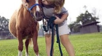 Près de la moitié des personnes qui ont obtenu un brevet d'équitation dans le monde (40%) ont moins de 12 ans, et plus de la moitié sont âgés de moins […]