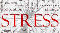 Des recherches antérieures ont montré que le stress pouvait influencer la santé du cœur. Une nouvelle étude publiée dans le Journal de l'American College of Cardiology, le 13 Octobre 2014, […]