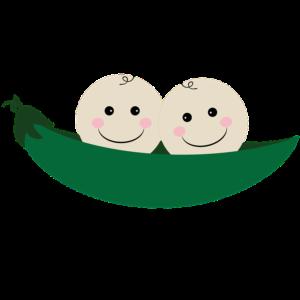 les jumeaux decouvertes des genes