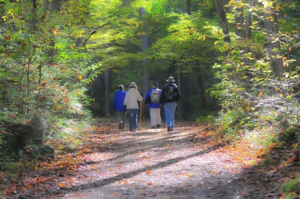 les bienfaits de la marche et la randonnee sur notre bien etre physique et mental