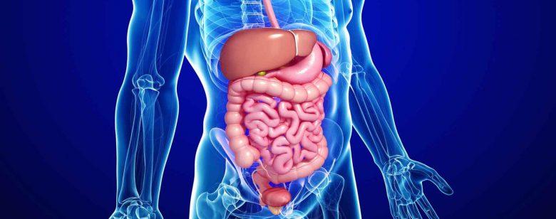 Gastroentérite virale - Prévenir les maladies infectieuses 1