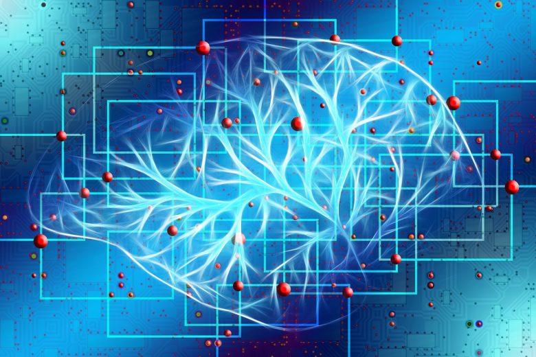 Les humains n'utilisent que 10% de leur cerveau : Mythe ou réalité ? 1