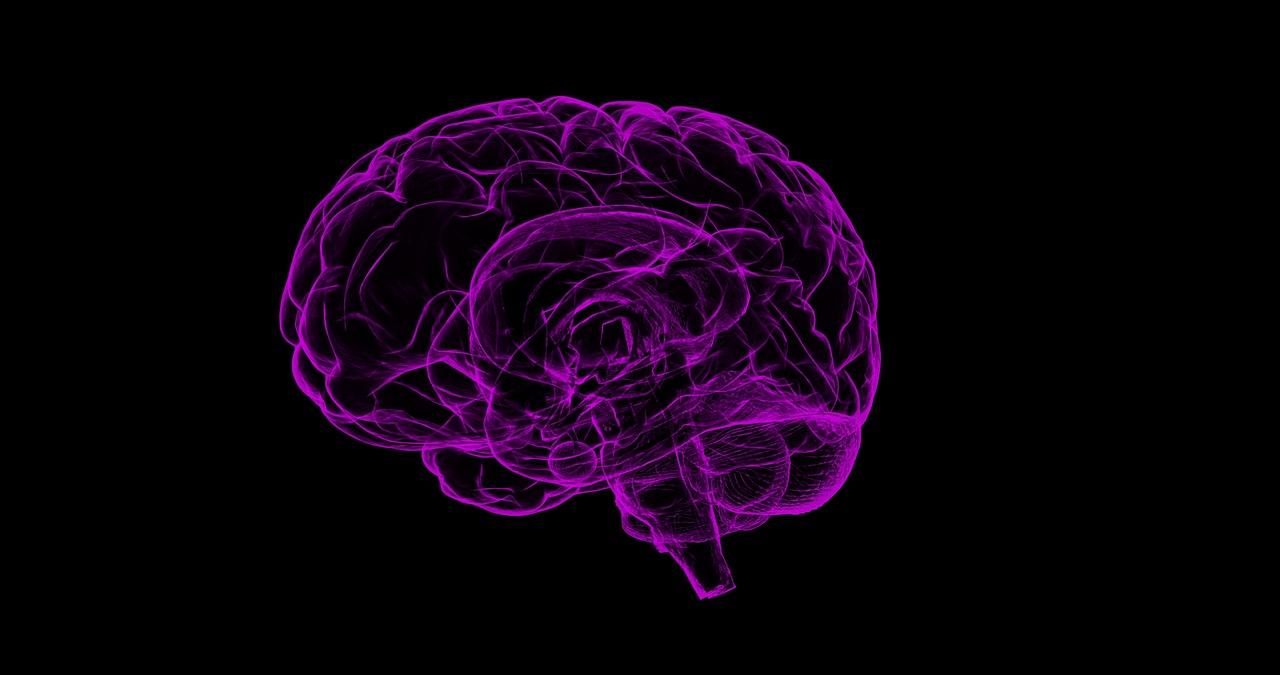 La maladie d'Alzheimer 1