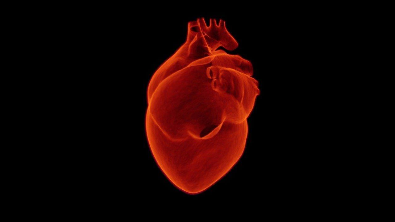 Cardiologues Bizerte 1