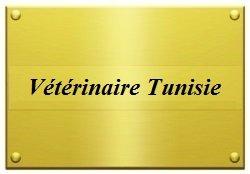 Vétérinaire en Tunisie 1