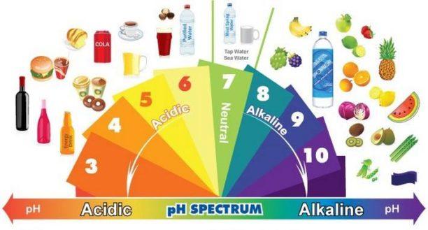 Quels sont les aliments alcalins ?