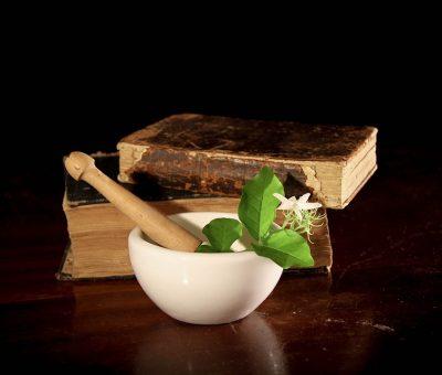 Les remèdes à base de plantes contre la gastro