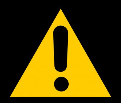 Le glutamate de sodium : sans danger ?